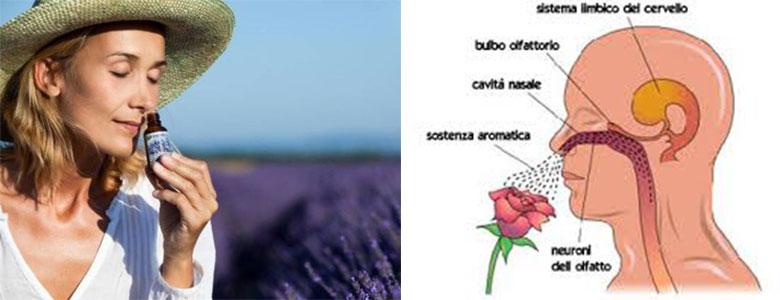 aromaterapia - essenze ed effetti